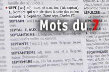 Mots-du-7
