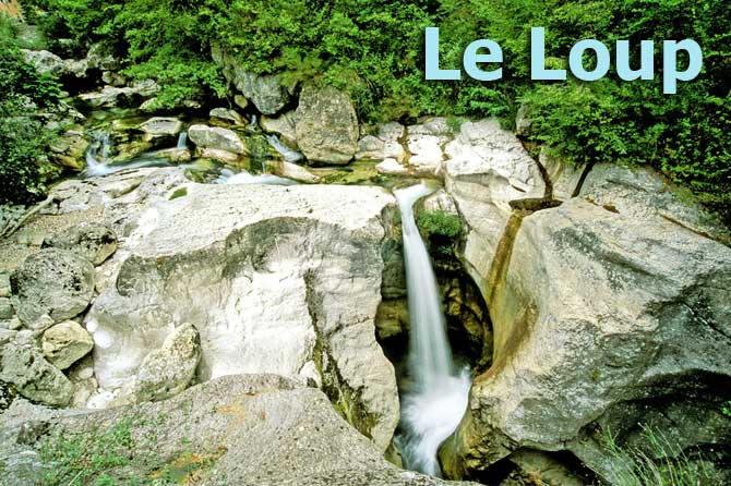Saut-du-Loup-Fotolia_673069