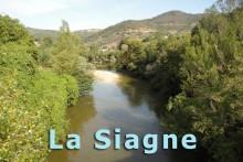 Siagne-1