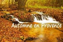 Automne-Provence_Fotolia_13