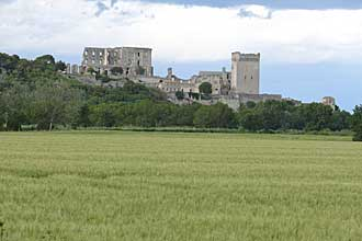 Blé-dur-Arles-Verlinden-P11