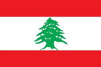 drapeau rouge et blanc avec un sapin