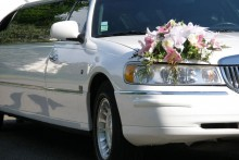 Limousine-en-Gros-Plan