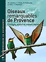 Oiseaux-remarquables-de-Pro