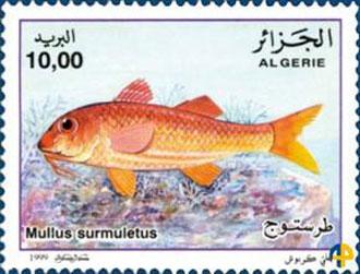 Timbre-Rouget-Algérie