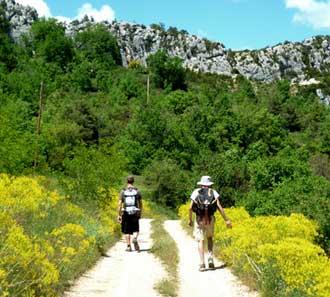 tourisme vert - Image