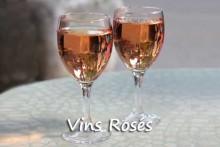 Vins-rosés_F25110650