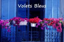 Volets-_Bleu_Fotolia_363406