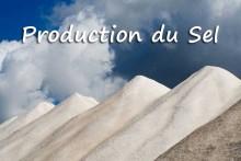 Production-du-Sel-2