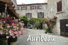 Auribeau-1B--Verlinden
