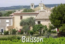 Buisson-1B--Verlinden
