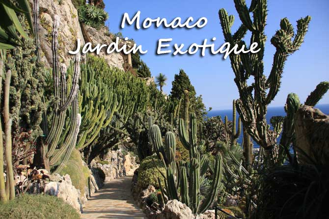 Jardin exotique de monaco provence 7 for Boulevard du jardin exotique