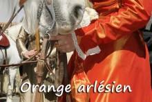 Orange-Arlésien_Fotolia_141