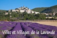 Villes-Lavande-Fotolia_33