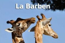 La-Barben-7-Zoo-Fotolia
