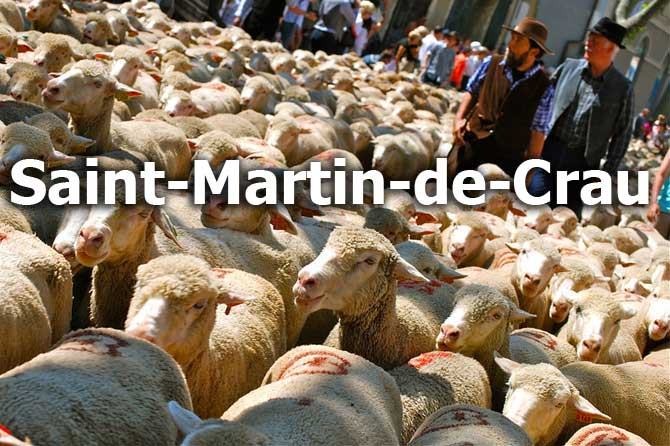 Saint-Martin-de-Crau--Fotol