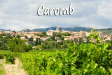 Caromb.-1B-Fotolia_69772715