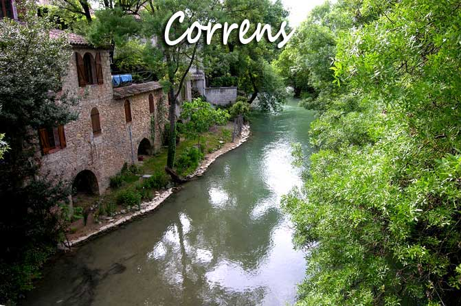 Correns.-Verlinden