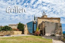 Grillon-1B-Fotolia_43571058