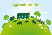 Agriculture-Bio-Fotolia_677