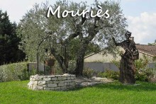 mouries-olivier-pv
