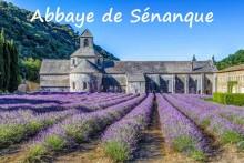 Abbaye-de-Sénanque-7-Fotolia