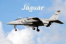 Jaguar-Fotolia_71703911