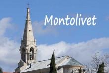 Montolivet-1-Verlinden
