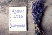 Agenda-Lavande-2016-Fotolia