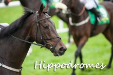 Hippodromes-Fotolia_9215615