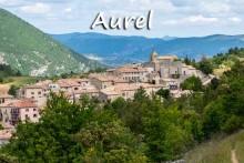 Aurel-1-Fotolia_65708054