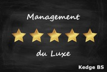 management-du-luxe-fotolia_