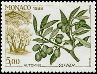 B-1988_Olivier-Monaco