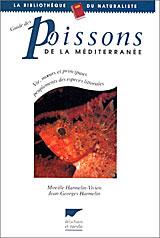 Poissons-Mediterrannee