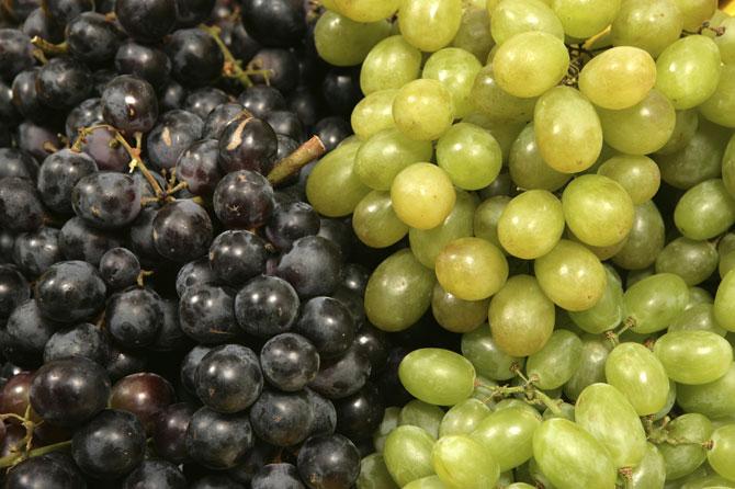 Raisins-Blancs-et-Noirs-iSt