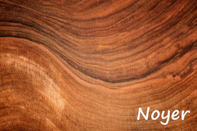 Noix et Noyer en provence Provence 7 # Bois De Chauffage Noyer
