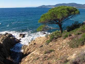 Pin-Maritime-Fotolia_889395