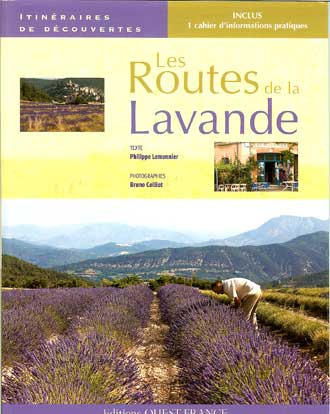 Routes-de-la-Lavande