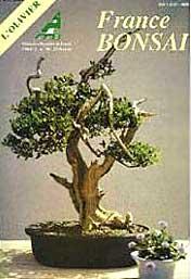 france-bonsai-n-18-l-olivie