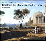 L'histoire-des-plantes-en-M