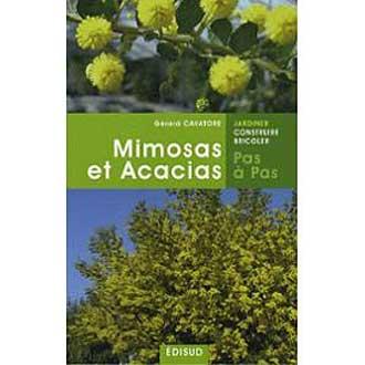 Mimosas-Et-Acacias