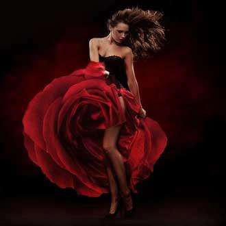 Danse-Flamenco-Femme-Rose-2