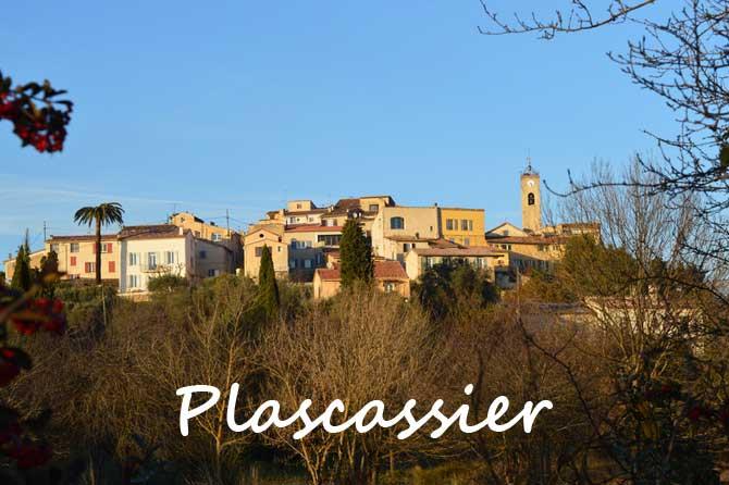 grasse-plascassier-fotolia_