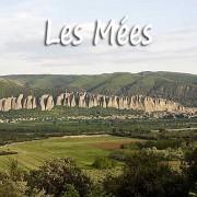 les-mees-2-fotolia_7871551