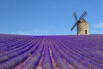 Moulin.-Fotolia_3610306