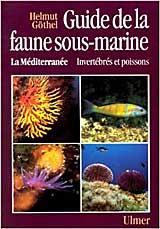 Guide-la-Faune-sous-marine