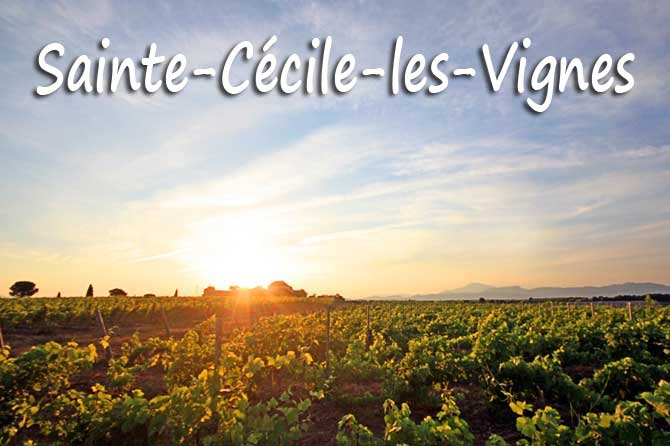 Sainte-Cécile-les-Vignes à visiter (84)