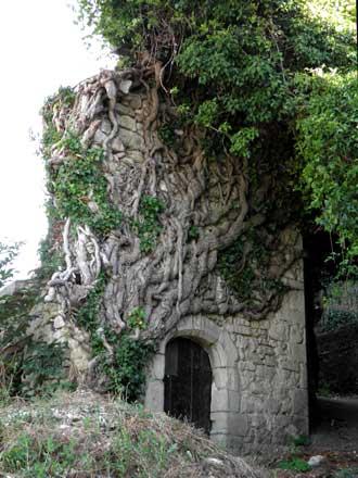 St-Michel-l'Observatoire.-4