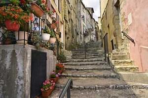 Callas.-Fotolia_85310679