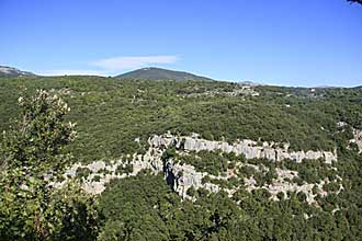 Mons-Siagne-Fotolia_6372327